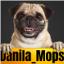 Командный Блок: Вопросы и ответы - последнее сообщение от Danila_Mops